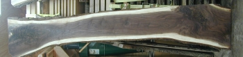 12/4 Walnut Slab- 1297