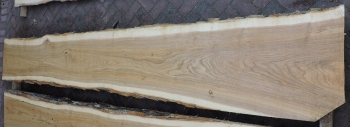 12/4 Ash Live Edge Table Top Slab - 1554